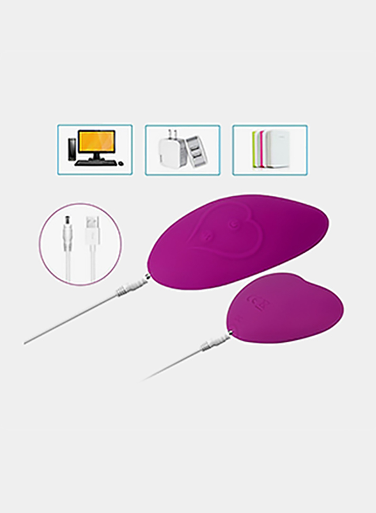 Vibrator Wireless Remote Butterfly Vibrators Vibrating Panties Clitoris Stimulation